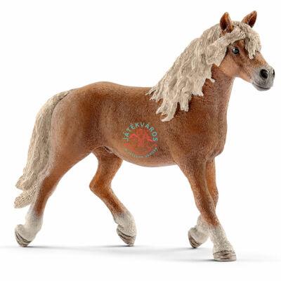 SCHLEICH Haflingi csődör ló