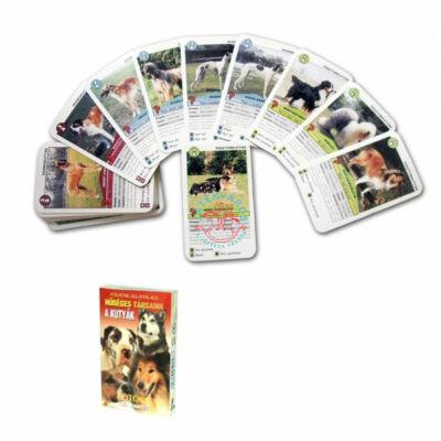 Földünk állatvilága-Hűséges társaink a kutyák kvíz-kvartett kártya